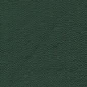 Pelle Spessorato col. Forest 3021