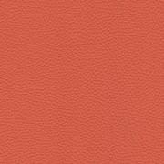 Pelle Spessorato Papaya 3031