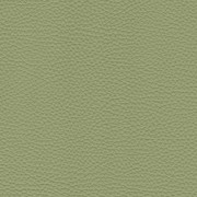 Pelle Spessorato Aloe 3032