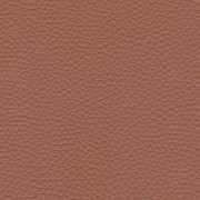 Pelle Pamplona Brandy 6503