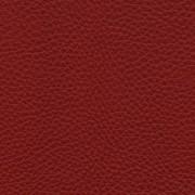 Pelle Natural Cardinale 4006