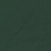 Pelle Spessorato Forest 3021
