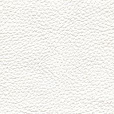 Pelle Spessorato col. Bianco 3009