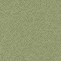 Spessorato Leather col. Aloe 3032