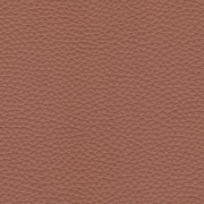 Pamplona Leather col. Brandy 6503
